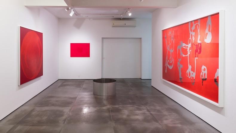 vista da exposição -- galeria nara roesler | rio de janeiro, 2017 foto pat kilgore © galeria nara roesler