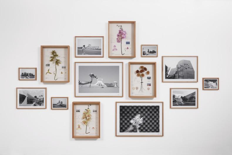 Alberto Baraya Estudos comparados modernistas, 2011 fotografias, objetos encontrados e desenho sobre cartão 200 x 300 cm