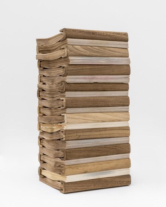 Marcelo Silveira Da série modernas 2, 2015 livro de artista 43 x 18 x 23 cm