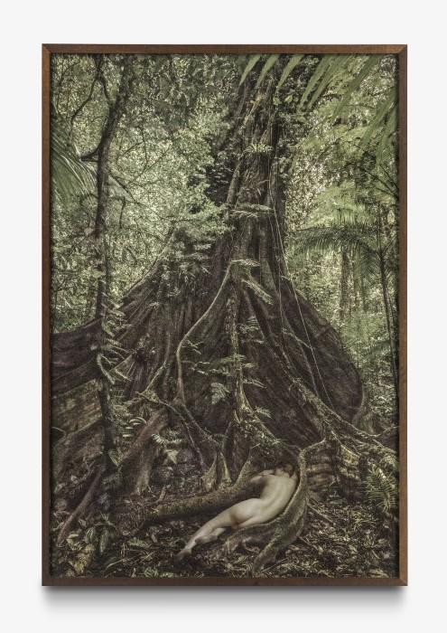 Cássio Vasconcellos Dríades # 15, 2019 impressão jato de tinta sobre papel de algodão 150 x 100 cm