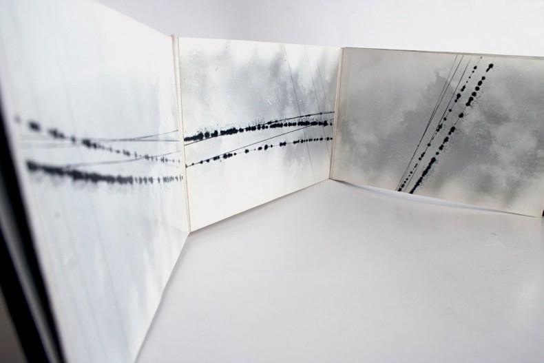 paulo bruscky, composições no fio, partituras mutantes, 1979