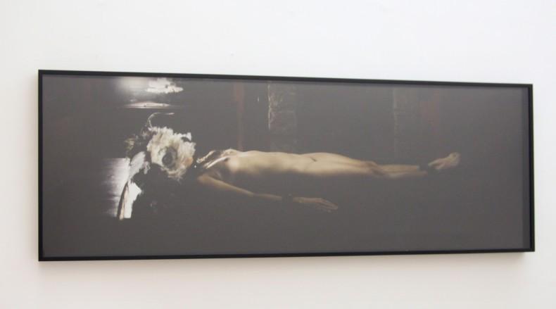 virginia de medeiros auto-retrato - jardim das torturas, 2012-2014