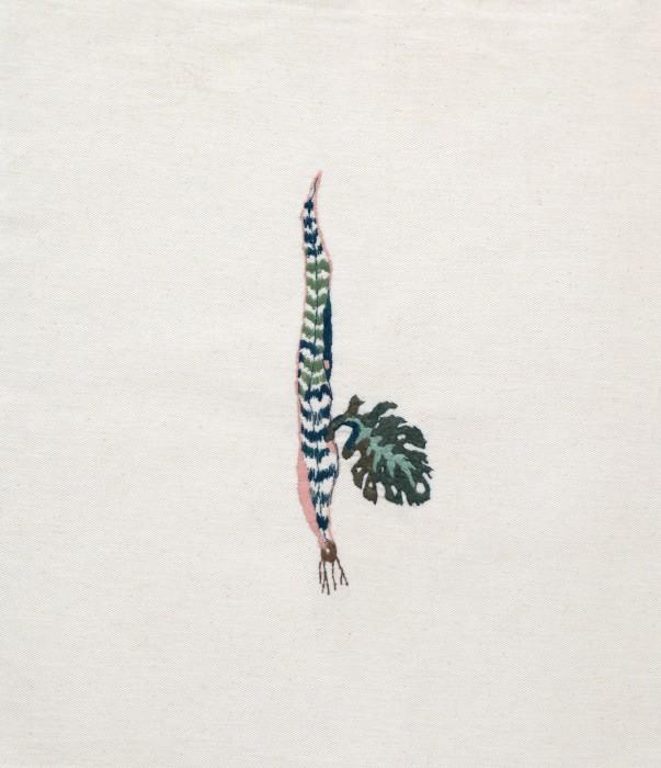 brigida baltar a quimera das plantas [espada de são Jorge e costela de adão], 2015