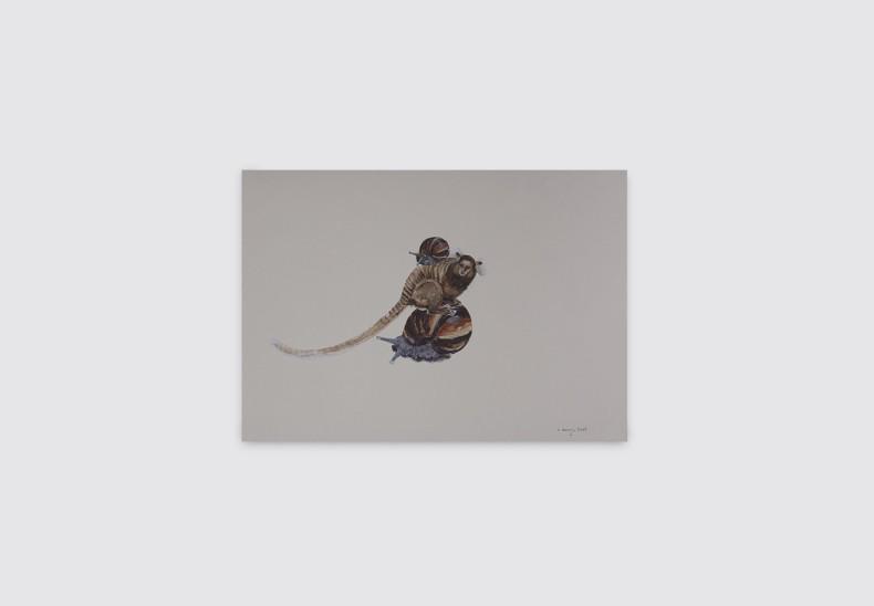 Alberto Baraya Músicos de Rio: Titi y caracoles africanos, 2018 lápis e tinta acrílica sobre papelão 36 x 56 cm