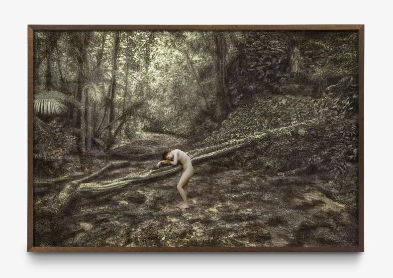 Cássio Vasconcellos Dríades # 13, 2019 impressão jato de tinta sobre papel de algodão 100 x 150 cm