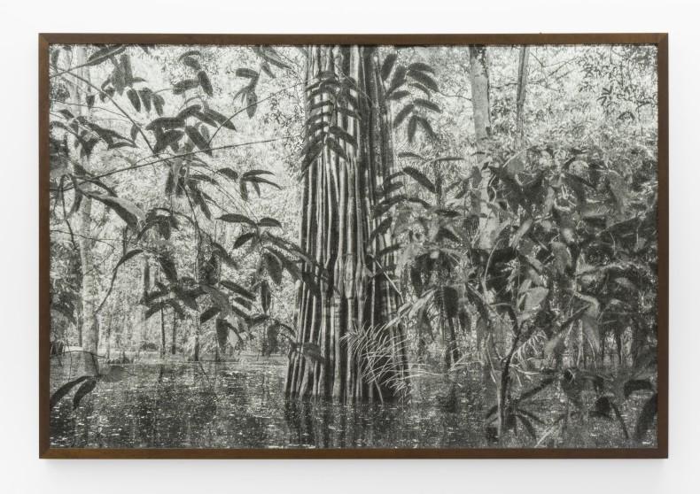 Cássio Vasconcellos Viagem Pitoresca pelo Brasil # 16, 2015 impressão jato de tinta sobre papel de algodão 100 x 150...