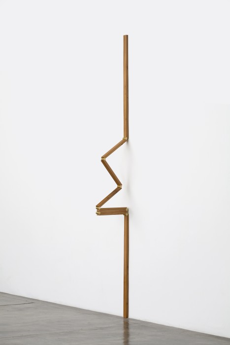 untitled # 8, from metaméricos series, 2010
