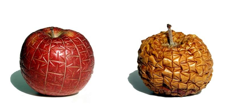 micro and soft on macintosh apple, 1999
