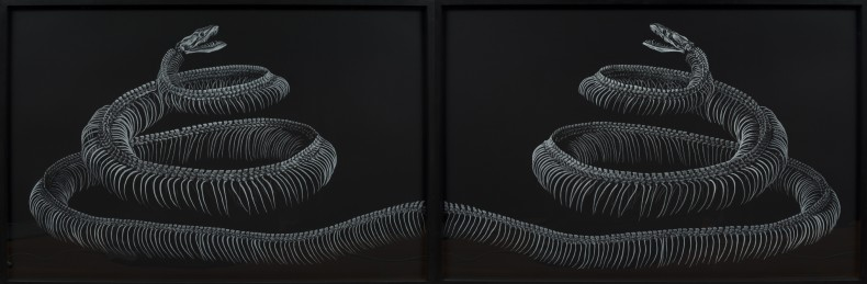 anfisbena (díptico), 2012