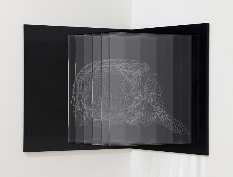 anamórfico, 2010