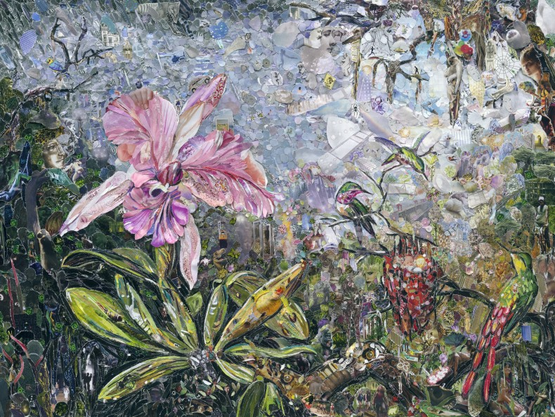 pictures of magazine 2: orchid and three brazilian hummingbirds, after martin johnson heade, 2012