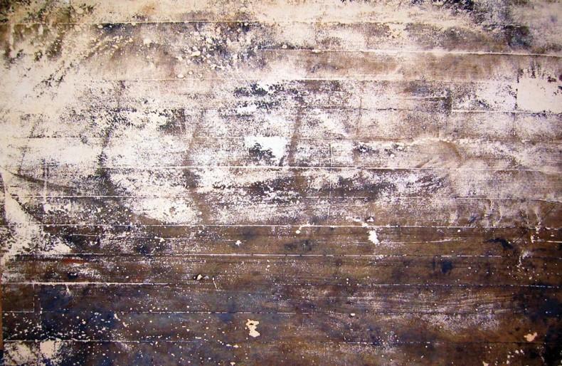 chuva, 2005