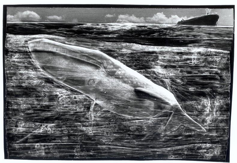 Paisagens marinhas #01, 1993–94