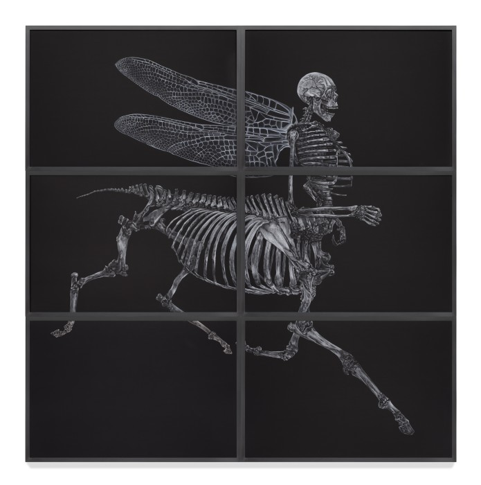 Centauro_Skeleton_Libélulis, 2012