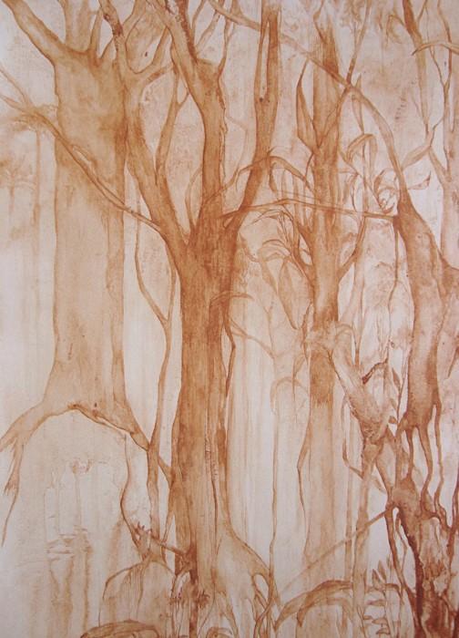 floresta vermelha , 2007