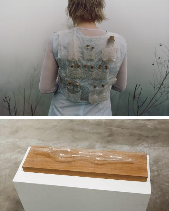 a coleta da neblina, 2002