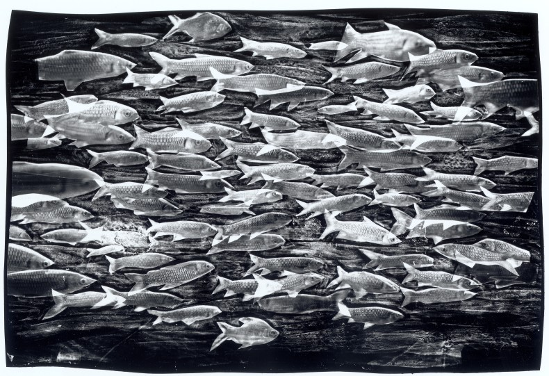 Paisagens marinhas #03, 1993–94