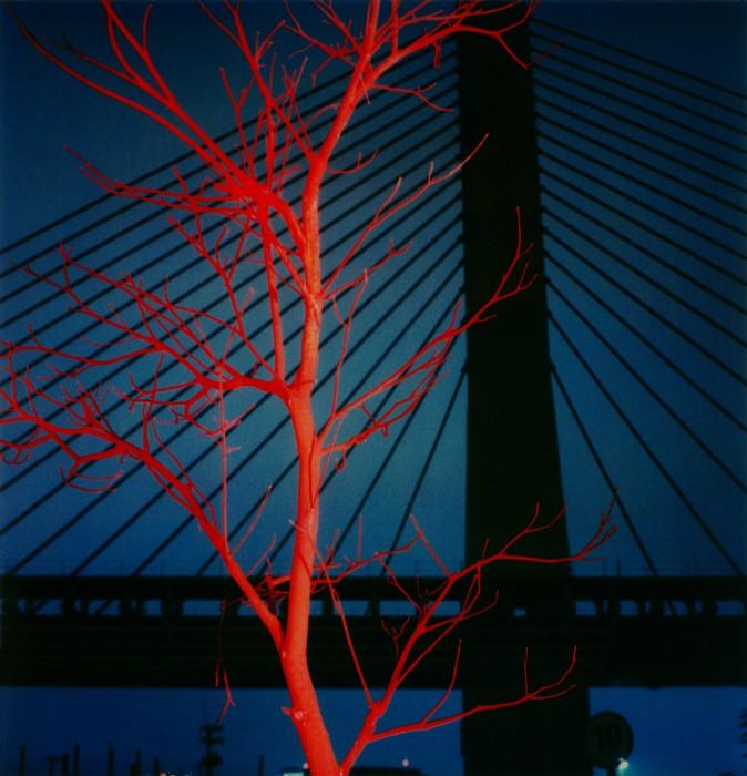 Marginal do Pinheiros #19, da série Noturnos São Paulo, 2000