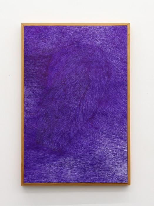 marcelo silveira, criação do mundo, 2012