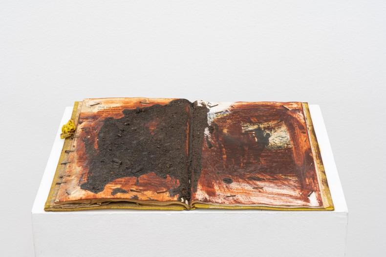 Karin Lambrecht Sem título/Untitled, 1990 terra e pigmentos em emulsão acrílica sobre livro soil and pigments in acrylic medium on book 20 x 27,5 x 1,5 cm 7.9 x 10.8 x 0.6 in