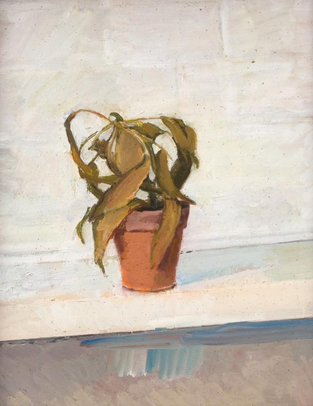 Claude Rogers, Dead Plant, 1976