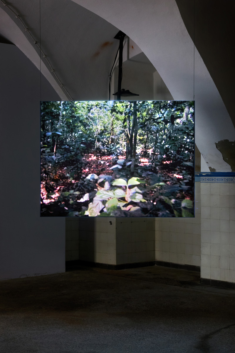 I am Nature – Of Vulnerability. Survival in the risk society: ROHKUNSTBAU 26<br>