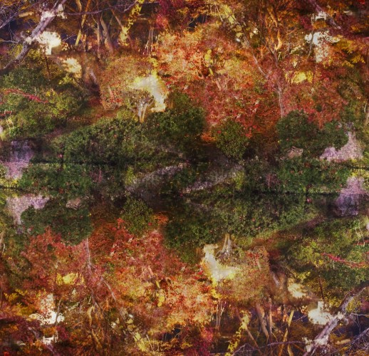 <div class=&#34;artist&#34;><strong>Ori Gersht</strong></div> (b. 1967) <div class=&#34;title&#34;><em>Floating World 03</em>, 2016</div> <div class=&#34;medium&#34;>Diasec mounted on aluminium</div> <div class=&#34;dimensions&#34;>149.5 x 154.9 cm; (58 7/8 x 61 in.)</div> <div class=&#34;edition_details&#34;>Edition of 6 + 2 AP</div>