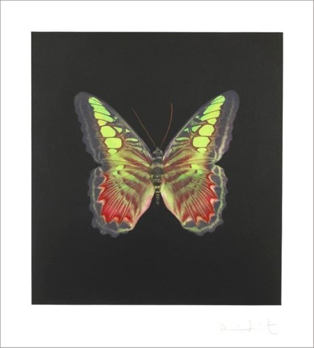 <div class=&#34;artist&#34;><strong>Damien Hirst</strong></div> (b. 1965) <div class=&#34;title&#34;><em>The souls on Jacob's Ladder take their flight, Untitled 02</em>, 2007</div> <div class=&#34;medium&#34;>Photogravure Etching</div> <div class=&#34;dimensions&#34;>119.6 x 108.4 cm; (47 1/8 x 42 5/8 in.)</div> <div class=&#34;edition_details&#34;>Edition of 72</div>