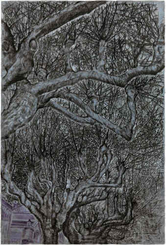 <div class=&#34;artist&#34;><strong>Ena Swansea</strong></div> (b. 1966) <div class=&#34;title&#34;><em>trees</em>, 2016</div> <div class=&#34;medium&#34;>Oil, ink and charcoal on graphite on panel</div> <div class=&#34;dimensions&#34;>203 x 137 cm; (79 7/8 x 54 in.)</div>