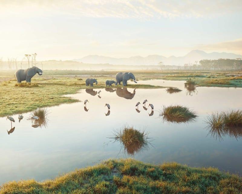 Dean West & Nathan Sawaya, African Elephant, 2019