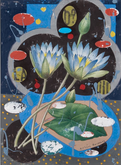 Colin Brown, Egyptian Blue Lily, 2021