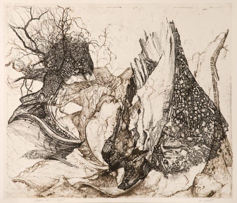 Ian Westacott, Blasted Rogart Oak, 2006/20