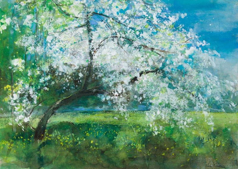 Ann Oram, Blossom, Wemyss Castle, 2021