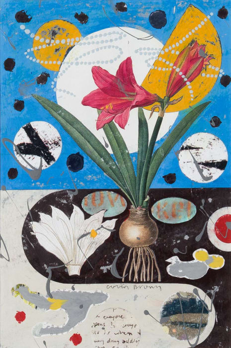 Colin Brown, Mexican Lily, 2021