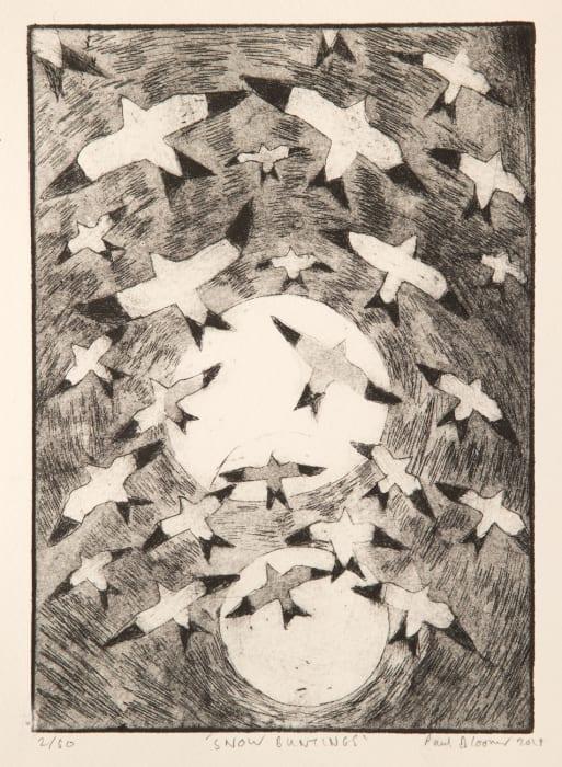 Paul Bloomer, Snow Buntings, 2019