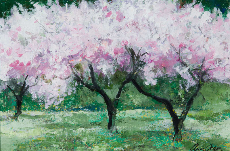 Ann Oram, Three Blossom Trees in an Orchard