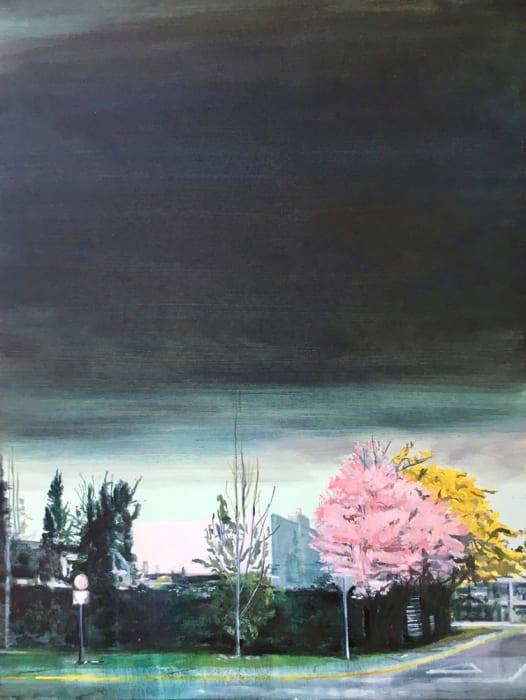 Alejandro Quiroga, Una hermosa y extraña nube negra