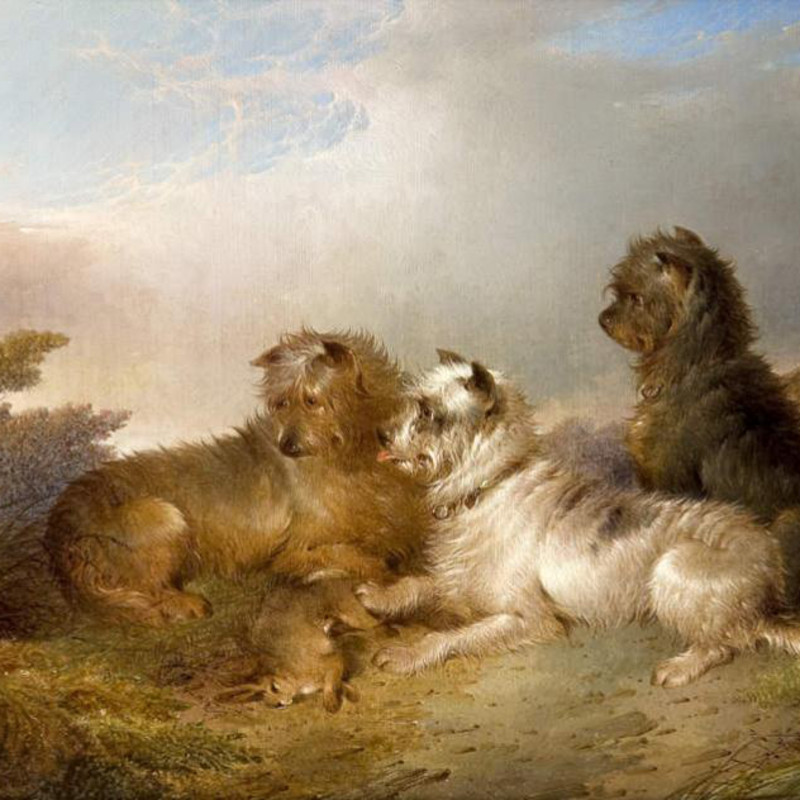 Paul Jones - Terriers in a landscape
