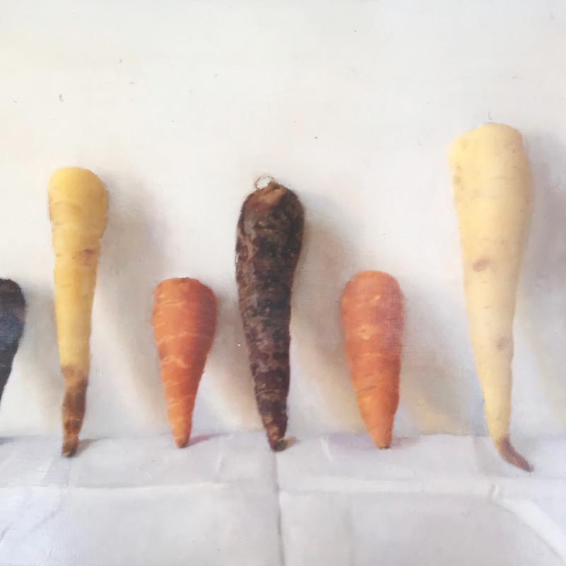 Kate Verrion - Heritage carrots