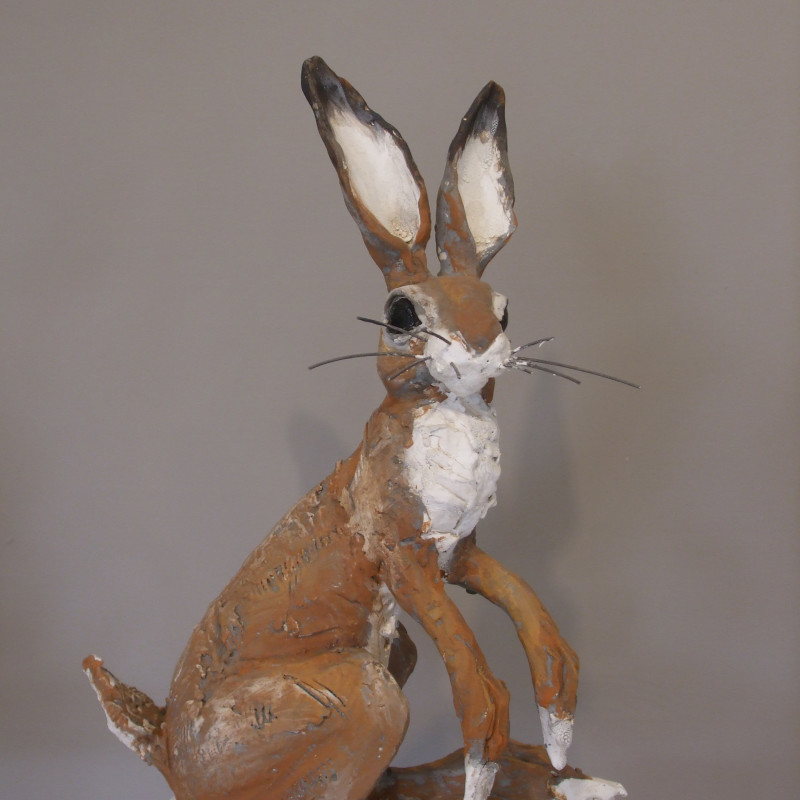 Chris Cummings - Sitting hare medium