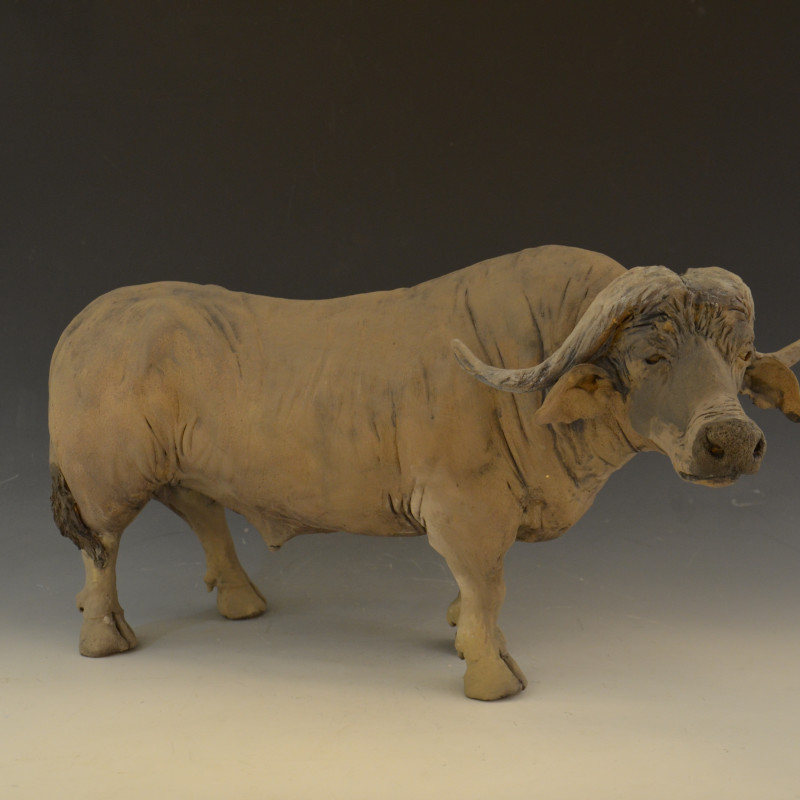 Adrian Guest - Water Buffalo