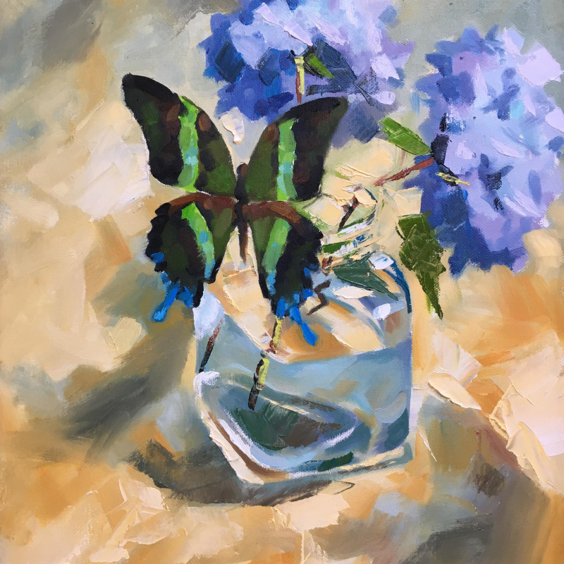 Alex Brown - Butterfly and blue Hydrangea