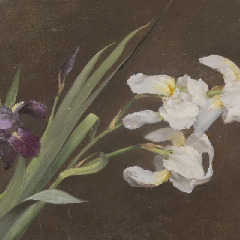 Fannie C. Burr, Floral Still Life