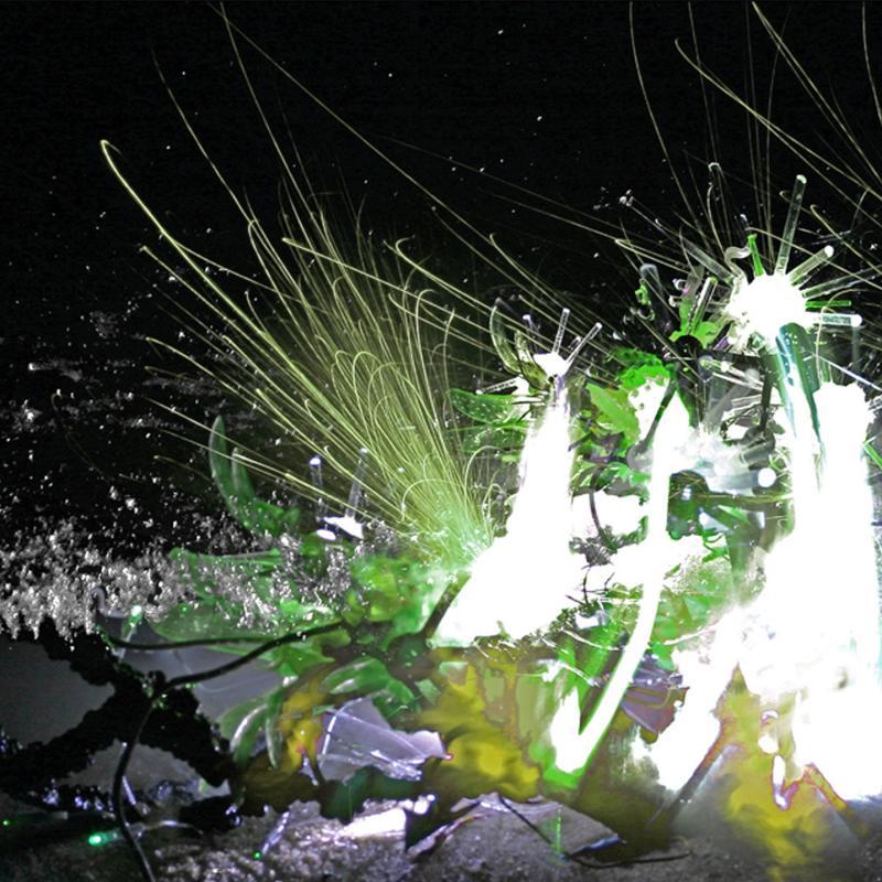 Disney Nasa Borg, Emergent Ecological Technologies #2, 2009