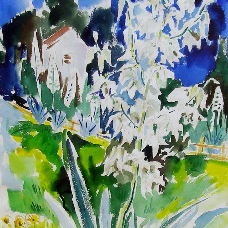 Werner Drewes, Yucca Growing in Garden, Circa 1960