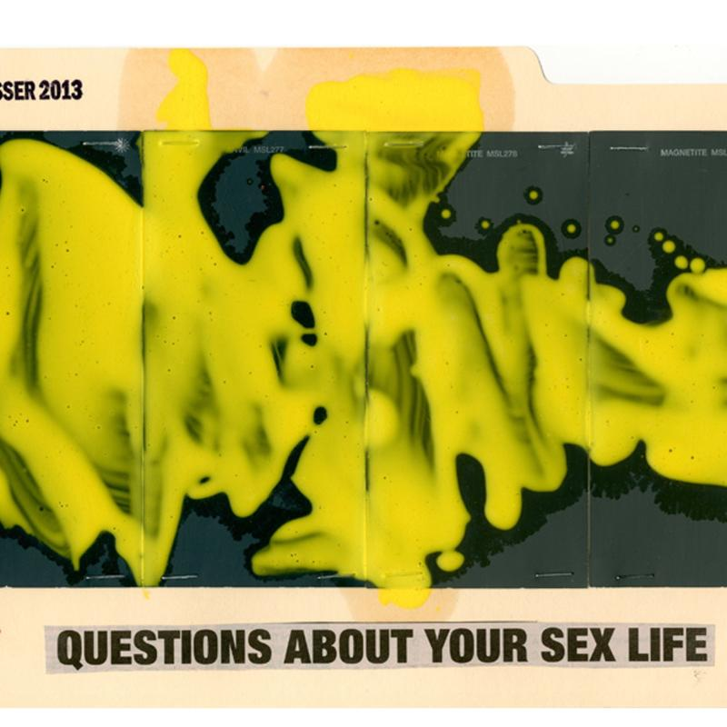 John Zinsser, File Study: Questions About Your Sex Life, 2013