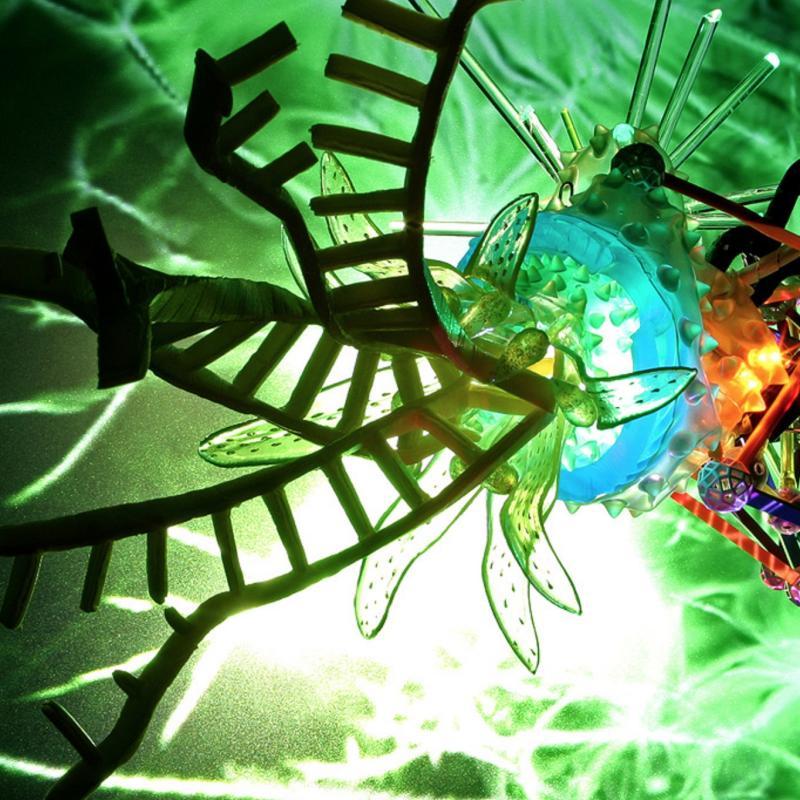 Disney Nasa Borg, Genetics Lite Show #3, 2008