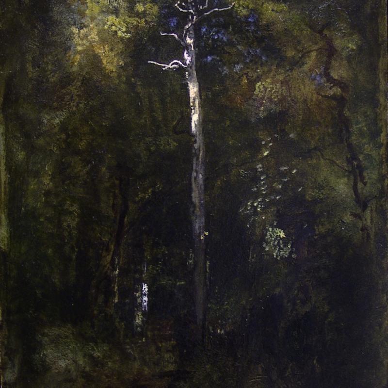 Narcisse Diaz de la Pena, Sous-Bois a Fontainebleau