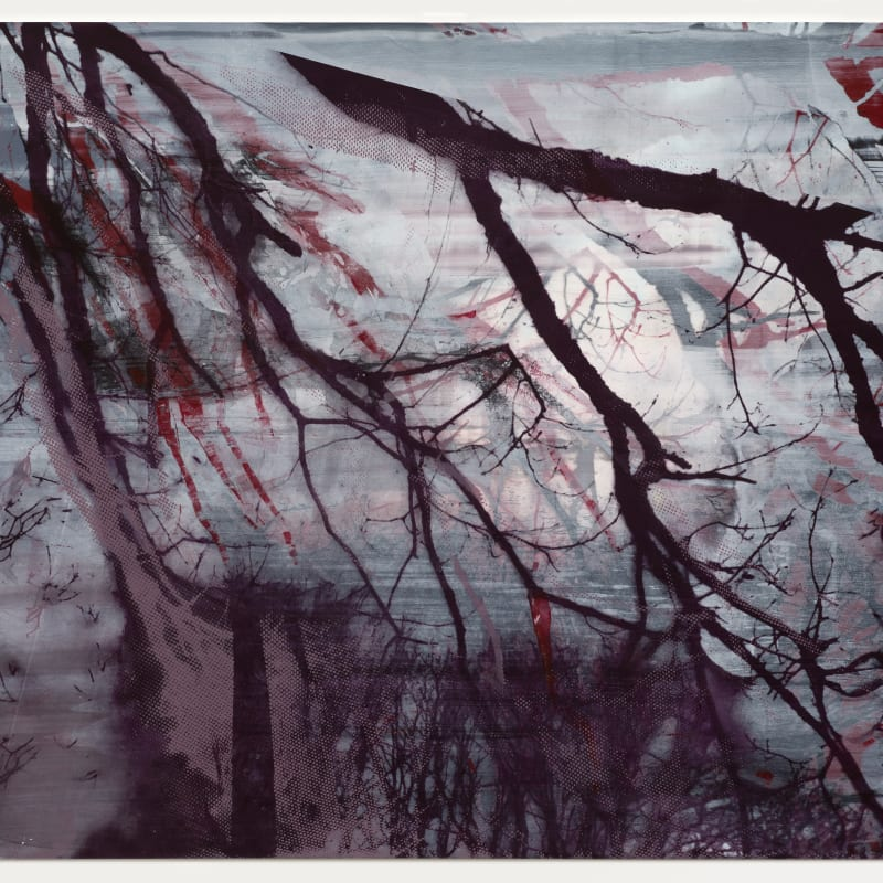 Elizabeth Magill, Of (2), 2017