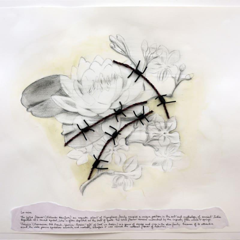 Reena Saini Kallat, Hyphenated lives (Lo-mine), 2014